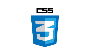 best css development company