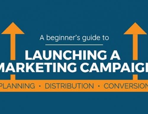 A Beginner's Guide to Launching a Successful Digital Marketing Campaign [INFOGRAPHIC]